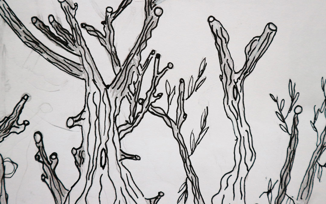 Chaque jour un arbre